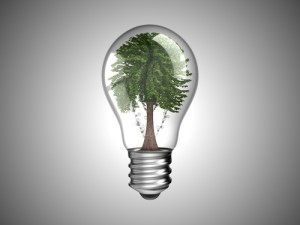 renewable lightbulb